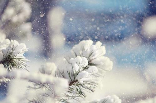 nhung bai tho tinh buon mua dong hay nhat 1 - Những bài thơ tình buồn mùa đông hay nhất