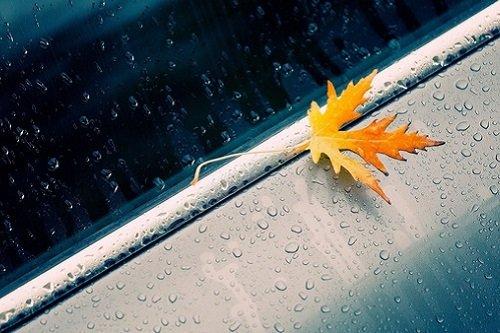 nhung bai tho ve mua hay duoc yeu thich nhat 2 - Những bài thơ về mưa hay được yêu thích nhất